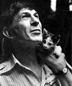 Star Trek Gallery - kitten_and_leonard_nimoy.jpg