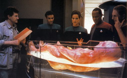 Star Trek Gallery - lynch_ds9cast.jpg