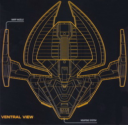 Star Trek Gallery - ventral-view.jpg