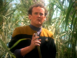 Star Trek Gallery - paradise_177.jpg