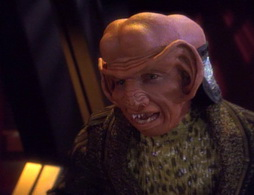 Star Trek Gallery - thehouseofquark_039.jpg