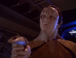 Star Trek Gallery - wayofwarrior2_535.jpg