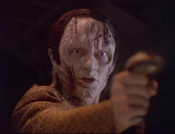 Star Trek Gallery - wayofwarrior2_712.jpg