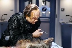 Star Trek Gallery - phlox_mirror.jpg