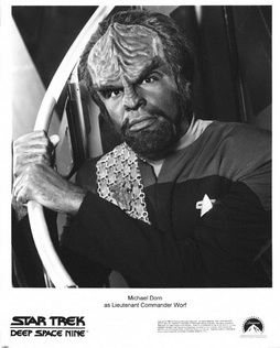 Star Trek Gallery - worf_027.jpg