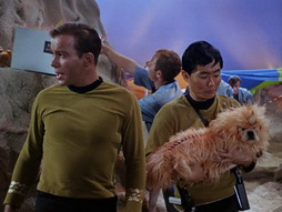 Star Trek Gallery - StarTrek_still_1x05_TheEnemyWithin_0032.jpg