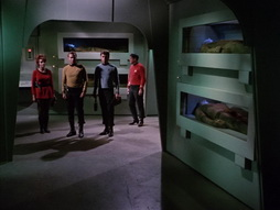 Star Trek Gallery - StarTrek_still_1x22_SpaceSeed_0389.jpg